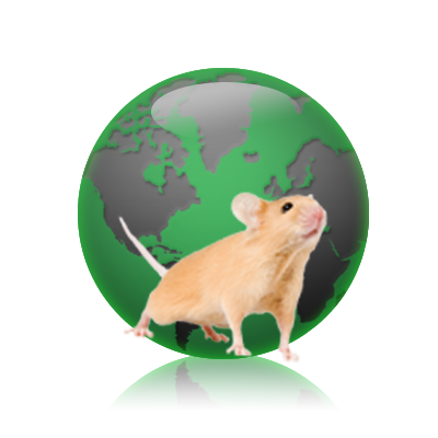Mouse genome sequences reveal variability, complex evolutionary ...